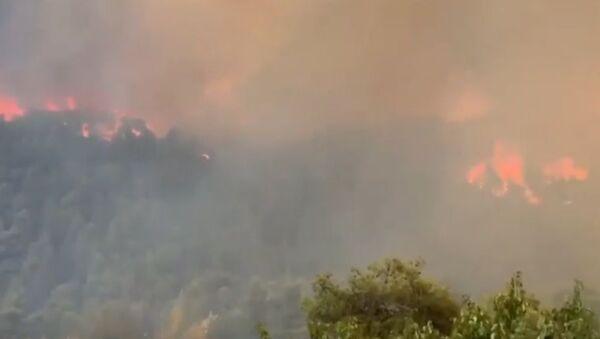 Pożary w Grecji  - Sputnik Polska
