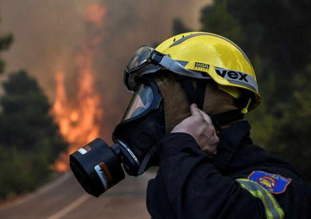 Pożary lasów na greckiej wyspie Eubea