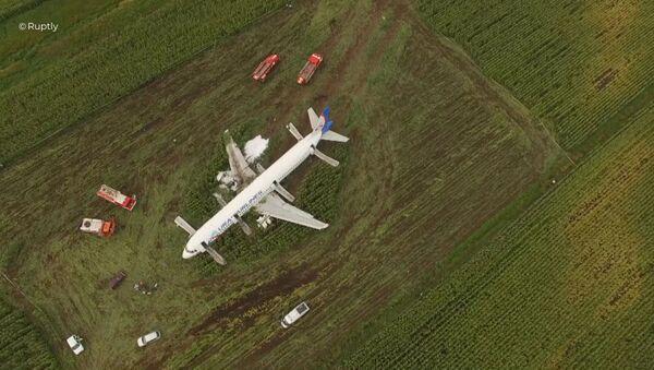 Awaryjne lądowanie samolotu pod Moskwą  - Sputnik Polska