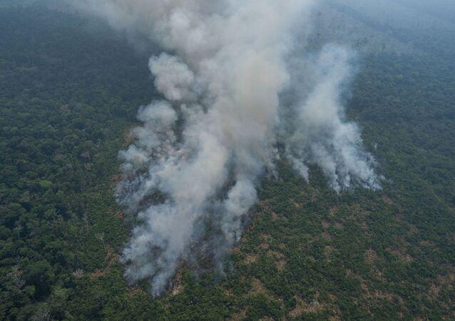 Pożary w brazylijskiej Amazonii