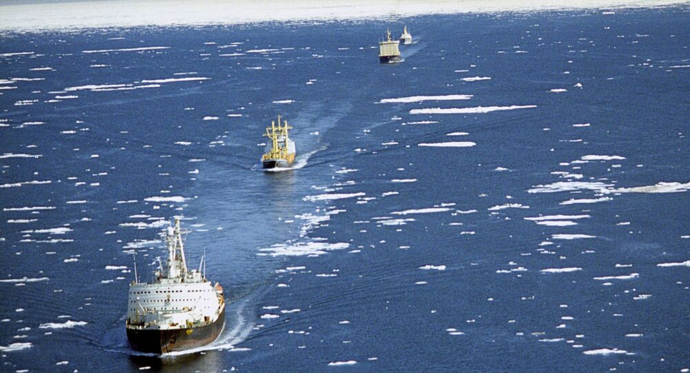 Karawana statków transportowych w towarzystwie lodołamaczy przepływa przez Północną Drogę Morską