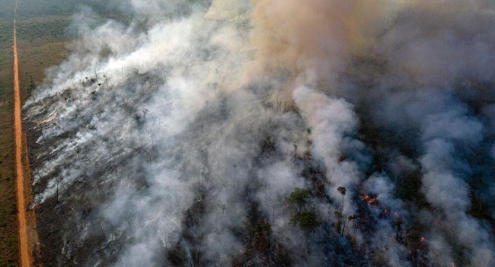 Pożar Amazonii