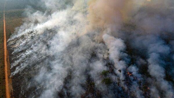 Pożar Amazonii  - Sputnik Polska