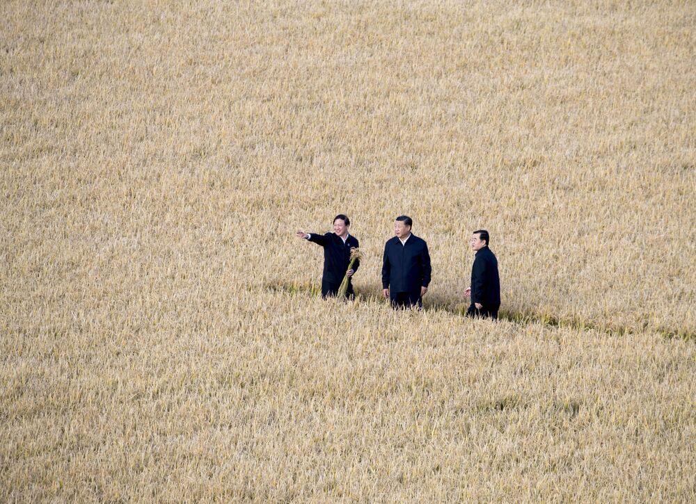 Prezydent Chin Xi Jinping w polu