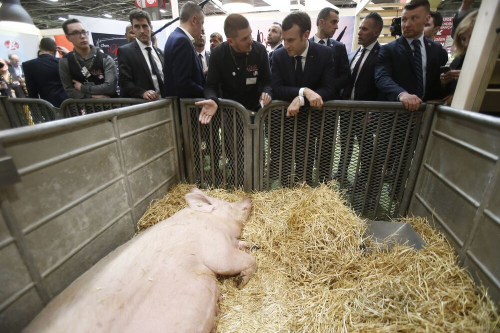 Emmanuel Macron podczas targów rolniczych