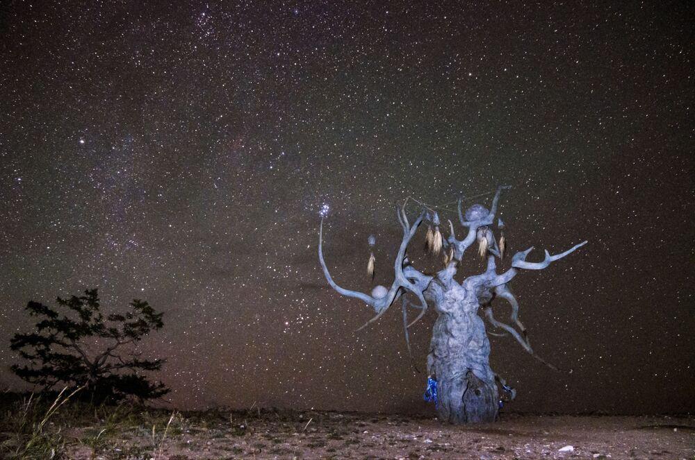 Rzeźba Strażnik Bajkału