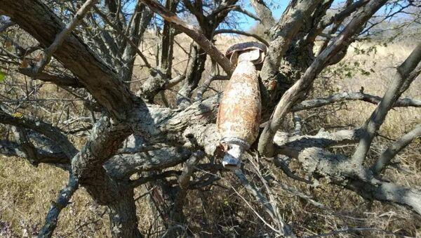 Na Krymie znaleziono niemiecką bombę z czasów II wojny światowej, która przez cały ten czas wisiała na drzewie. - Sputnik Polska