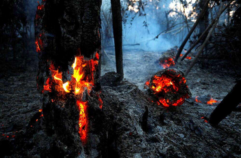 Płonące lasy Amazonii w Brazylii.
