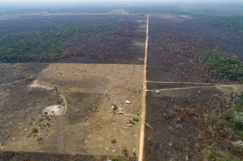 Zdjęcie lotnicze spalonego obszaru w lasach Amazonii w Brazylii.