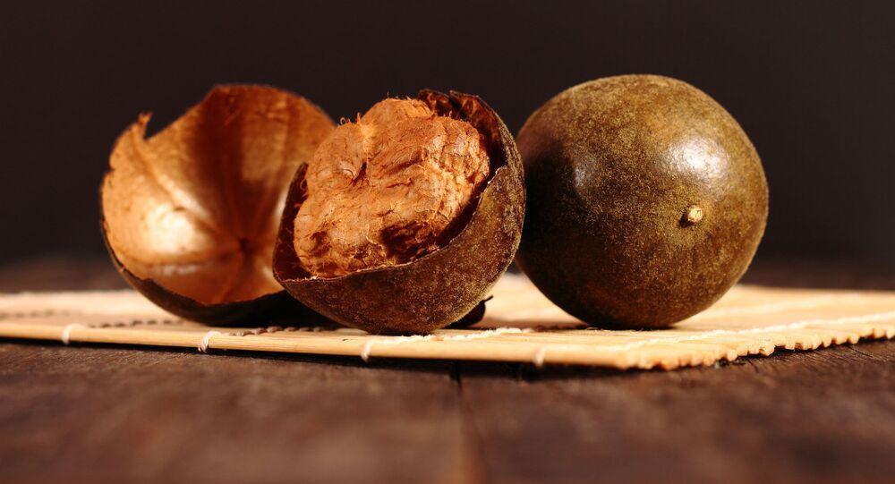 Owoce Siraitia grosvenorii