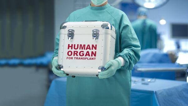 Transplantacja organów - Sputnik Polska