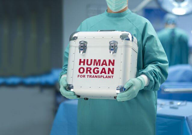Transplantacja organów