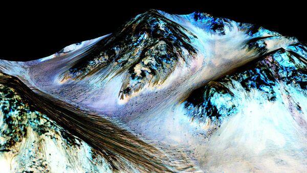 Obraz z powierzchni Marsa - Sputnik Polska