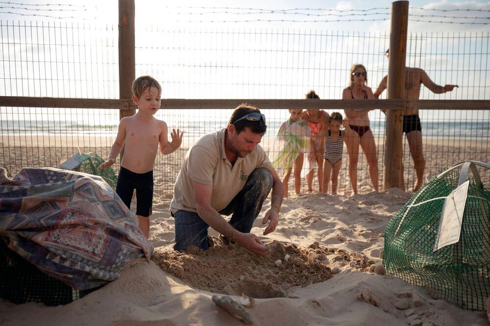 Wolontariusze w izraelskim centrum ratowania żółwi morskich w Tel Awiwie.
