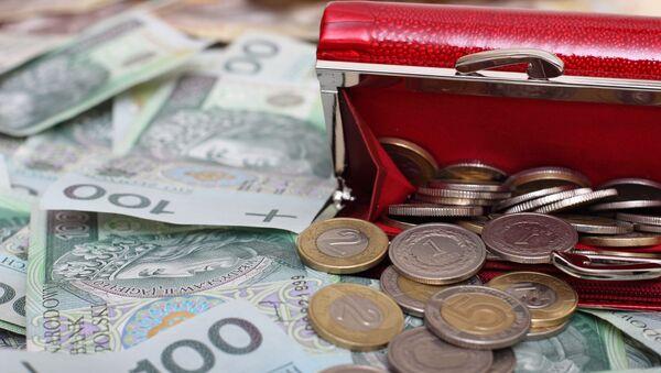 Portfel z polskimi pieniędzmi - Sputnik Polska