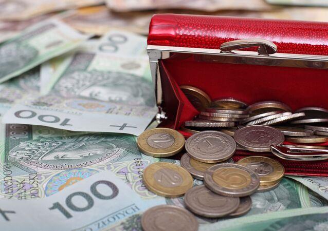 Portfel z polskimi pieniędzmi