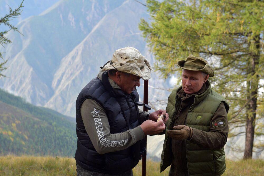 Władimir Putin i Siergiej Szojgu zbierają grzyby