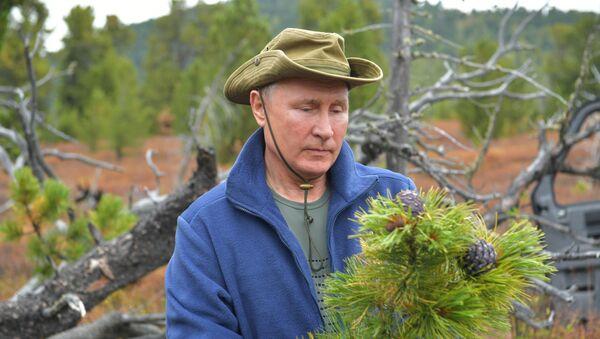 Władimir Putin wędruje po tajdze 7 października 2019 roku - Sputnik Polska