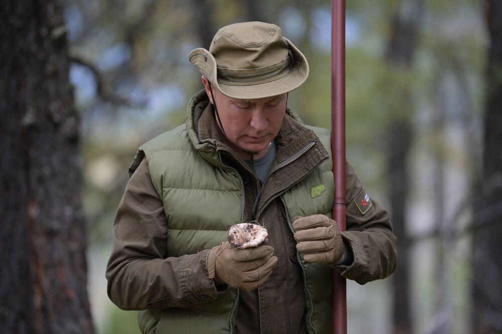 Władimir Putin wędruje po tajdze 7 października 2019 roku