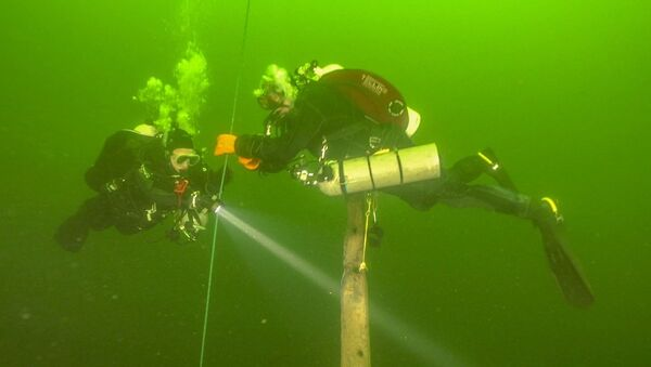 Znaleziska wyciągnięte z dna morza Bałtyckiego - Sputnik Polska