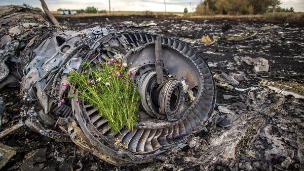 Kwiaty na szczątkach MH17 - Sputnik Polska