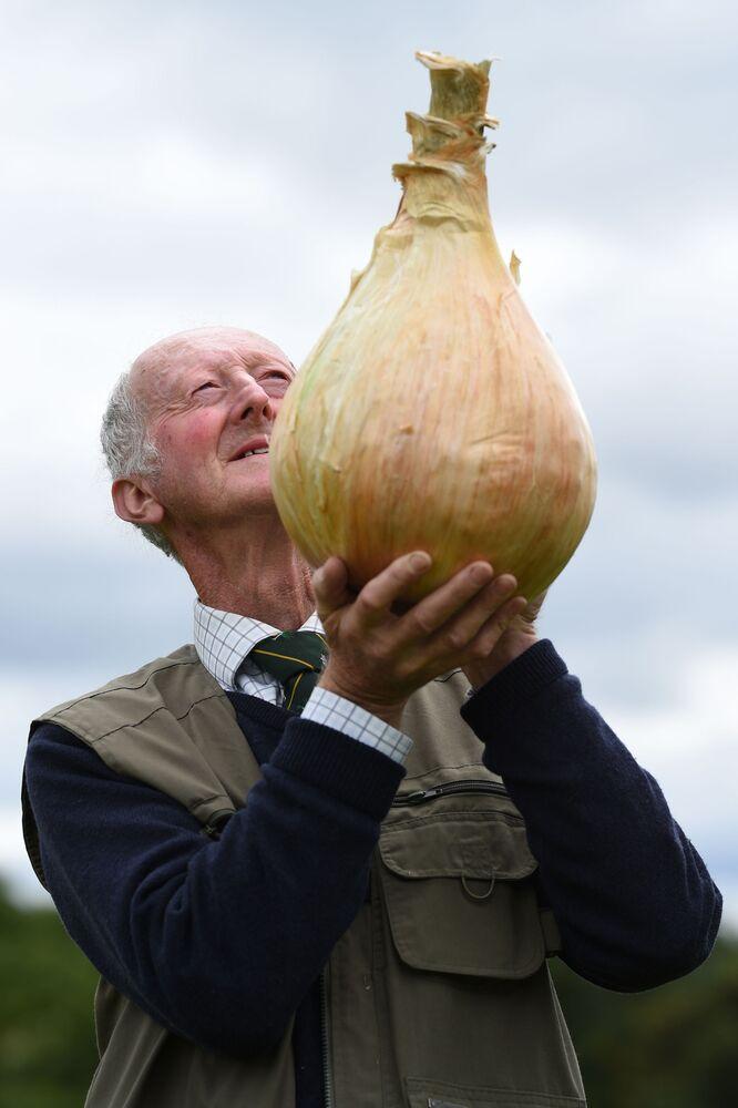 Peter Gleizebrook z cebulą o wadze 6,6 kg, który wygrał konkurs Autumn Flower Show w 2017 roku