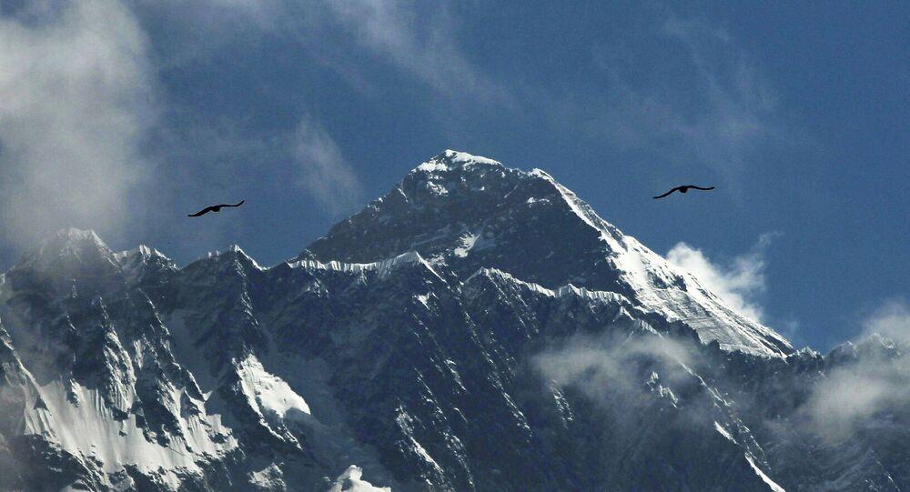 Ptaki nad Everestem