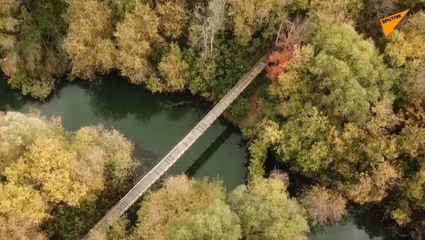 Emeryt odbudował most za własne pieniądze  - Sputnik Polska