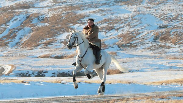 Przywódca Korei Północnej Kim Dzong Un jeździ konno podczas opadów śniegu na górze Pektu-san - Sputnik Polska
