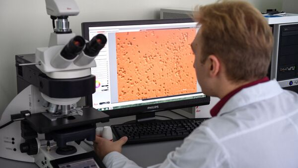 Pracownik Instytutu Biologii Fundamentalnej i Biotechnologii Syberyjskiego Uniwersytetu Federalnego bada pod mikroskopem bakterie - Sputnik Polska