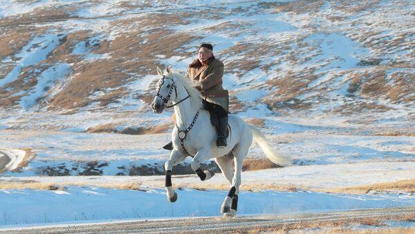 Przywódca Korei Północnej na białym koniu podczas opadów śniegu na górze Pektu-san - Sputnik Polska