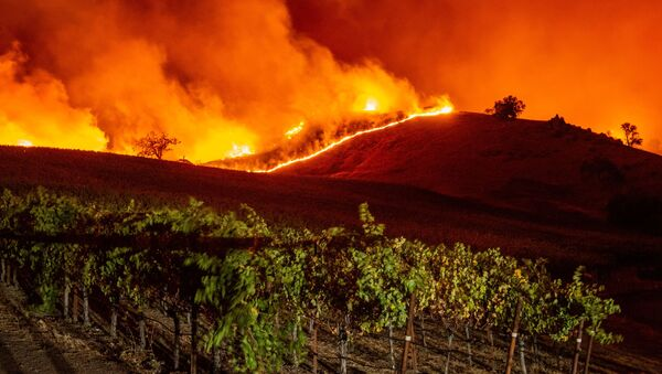 Pożary w Kalifornii, październik 2019 - Sputnik Polska