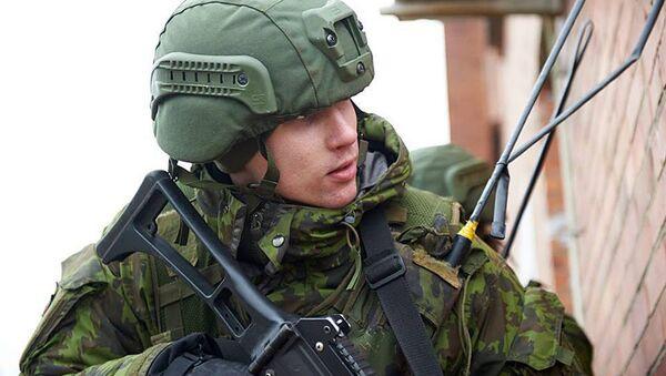 Litewski wojskowy - Sputnik Polska