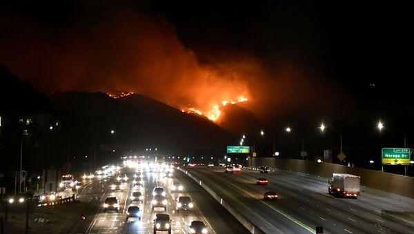 Pożar niedaleko autostrady 405 na wzgórzach Los Angeles - Sputnik Polska
