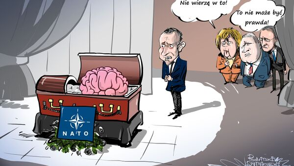 Macron: Martwica mózgu NATO - Sputnik Polska