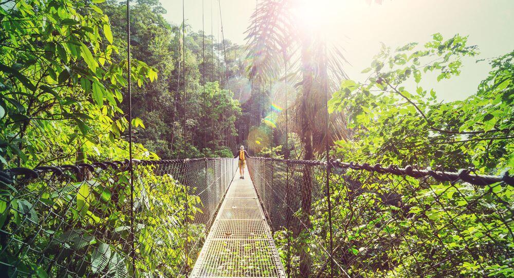 Spacer po dżungli na Kostaryce