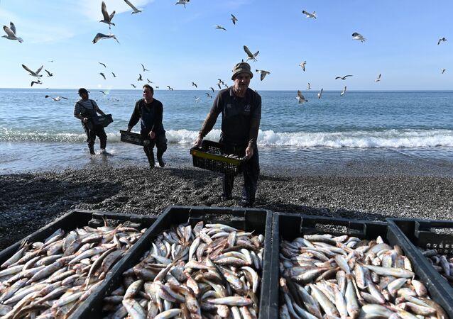 Łowienie barbaty na Morzu Czarnym