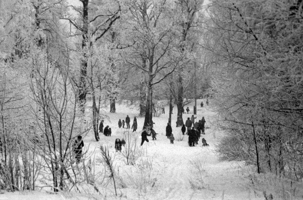 Spacer w parku. Moskwa