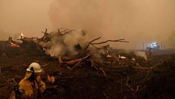Gaszenie pożarów leśnych w Australii  - Sputnik Polska