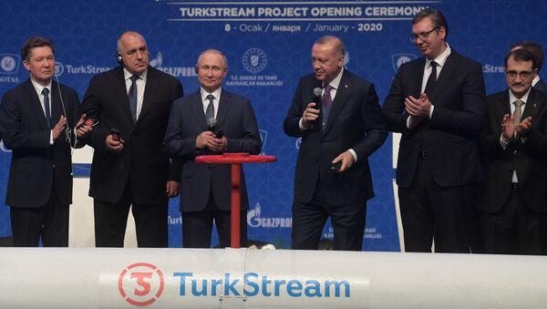Oficjalne otwarcie gazociągu Turecki Potok w Stambule - Sputnik Polska