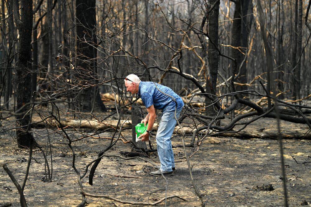 Ekolog przyniósł żywność lokalnym zwierzętom w pobliżu spalonego domu w Australii.