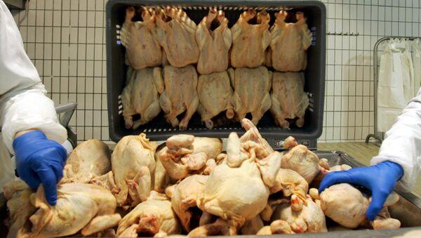 Pracownicy w zakładzie produkującym mięso - Sputnik Polska