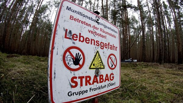 Znak ostrzegający przed niewybuchami na miejscu przyszłej fabryki Tesla - Sputnik Polska
