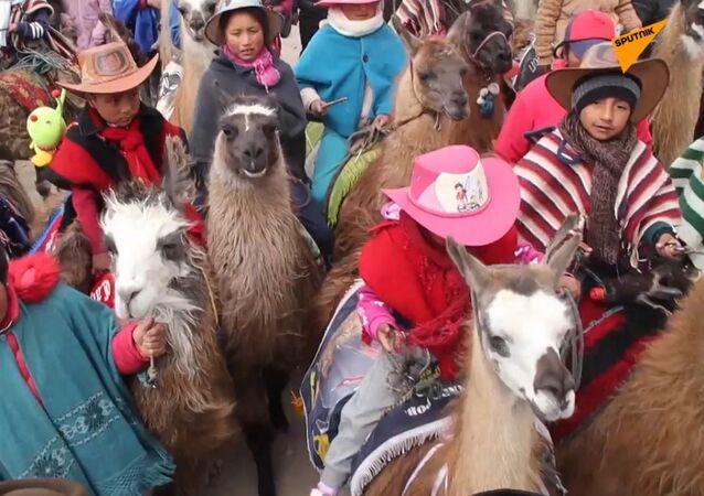 Wyścigi na lamach