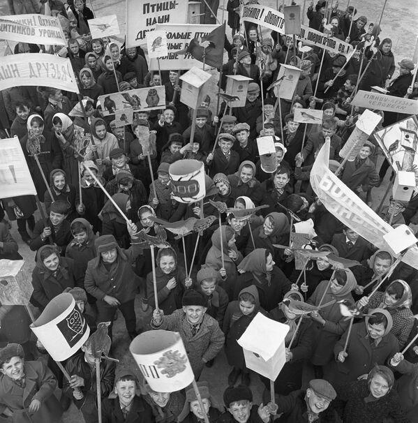 Uczniowie podczas Święta Ptaków, Białoruska Socjalistyczna Republika Radziecka 1967 rok  - Sputnik Polska