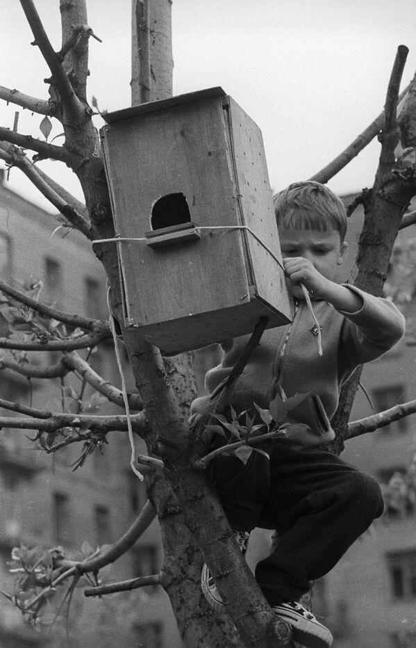 Karmnik, 1969 rok  - Sputnik Polska