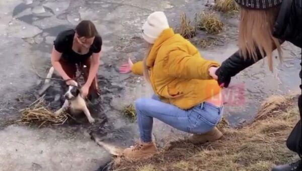 Kadry z akcji ratowania psa - Sputnik Polska