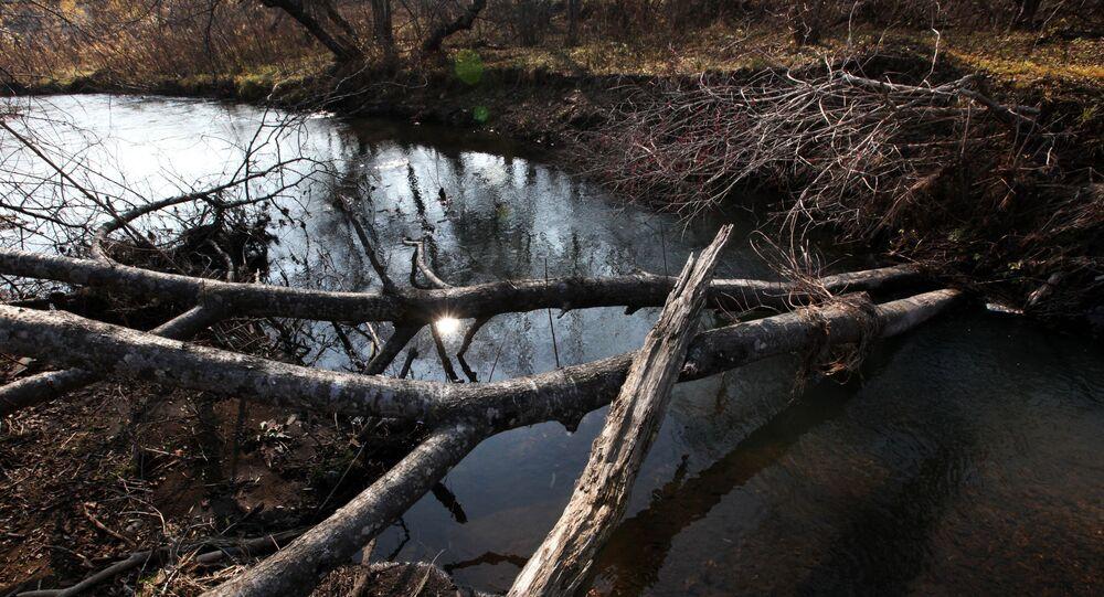 Rzeka Filippowka, Daleki Wschód
