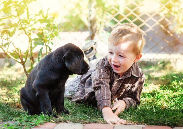 Dziecko i szczeniak golden retrievera