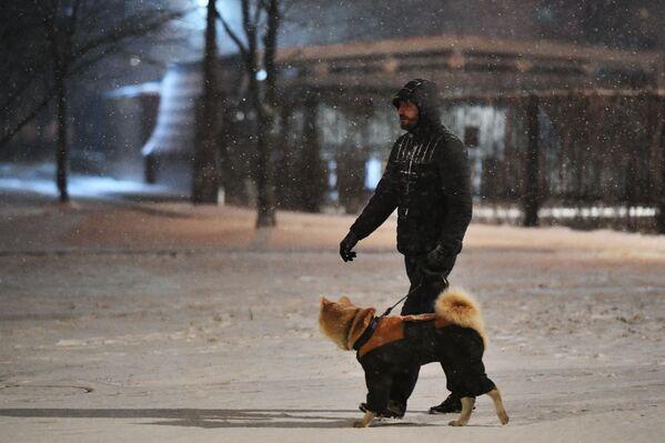 Mężczyzna z psem podczas opadów śniegu w Moskwie - Sputnik Polska